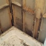 bathroom-repair-naas-damp