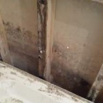 bathroom-repair-naas-rot
